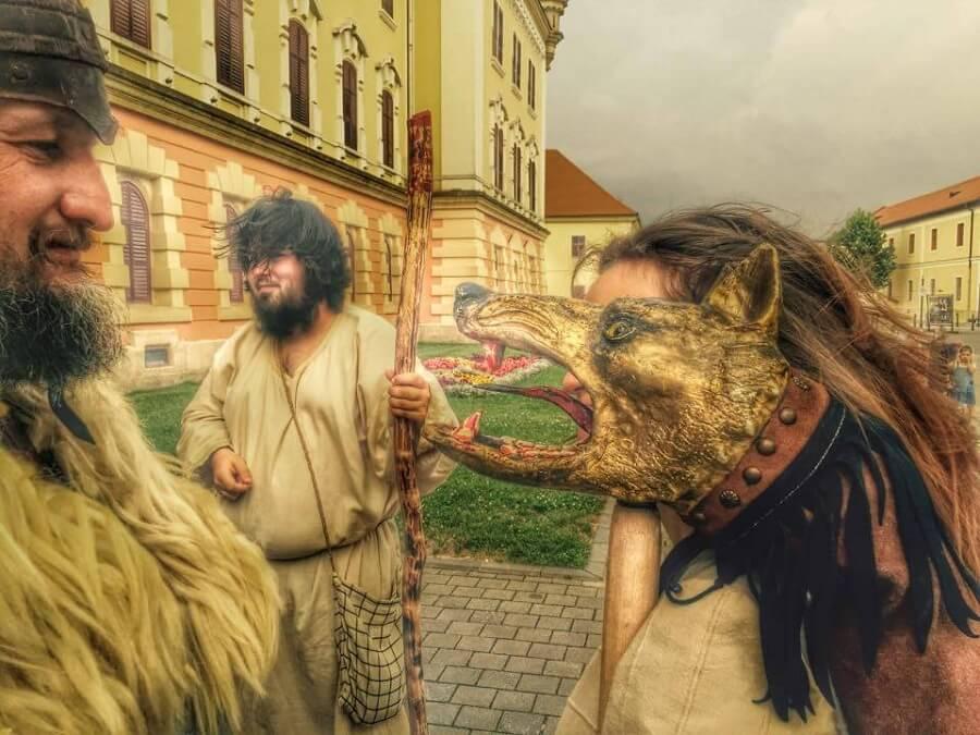 2 Radacini istorice Cetate Alba Iulia