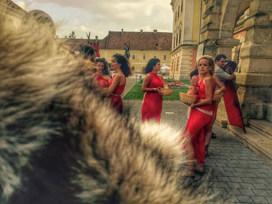 9 Radacini istorice Cetate Alba Iulia