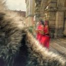 10 Radacini istorice Cetate Alba Iulia
