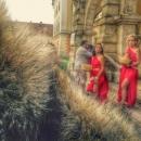 11 Radacini istorice Cetate Alba Iulia