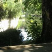 Cismigiu lac