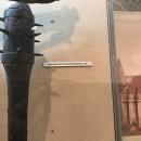 Foto Muzeul Național Militar 87