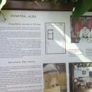 muzeul-satului-4
