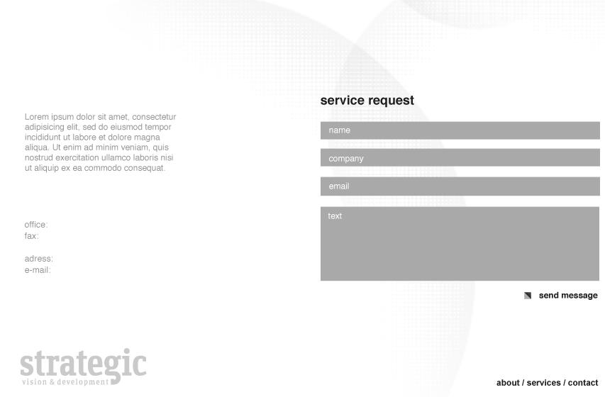 strategic-vision-development-web-contact