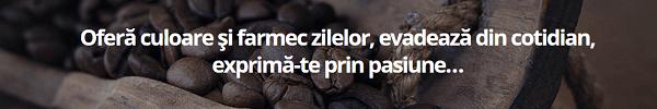 Abonamente espressoare cafea birouri corporate HEDONE