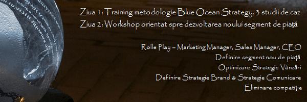Atelier strategie oceanul albastru, B2B Strategy, Daniel Rosca