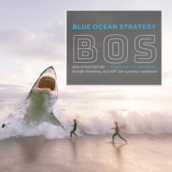 Blue Ocean Strategy ROMANIA B2B Strategy