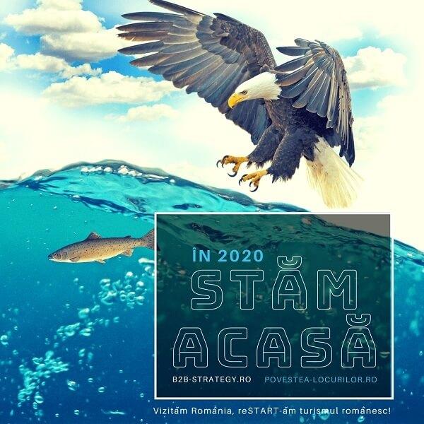 Blue Ocean Strategy ROMANIA implementare POVESTEA LOCURILOR