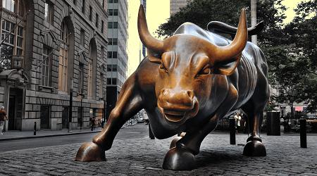 Capabilitati, New York Bull