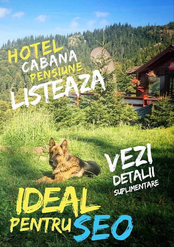 Director pensiuni, hoteluri, cabane Turist INFO unități de cazare