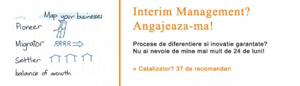 Interim Management. Daniel Rosca.
