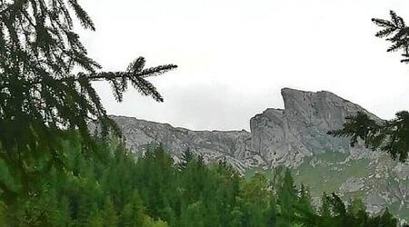 Iorgovan Piatra din Retezatul Mic