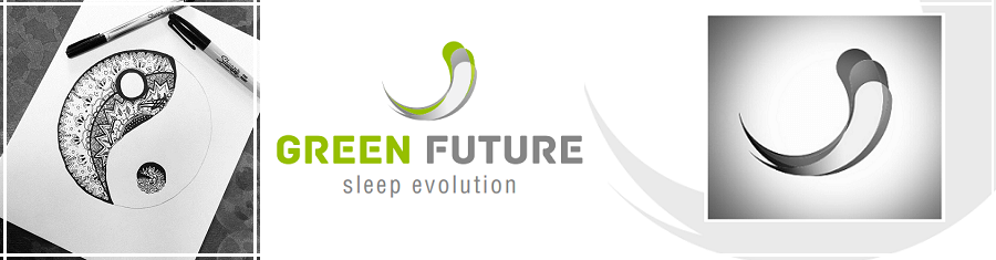 Evolutie proiecte marketing strategic Yin Yang Sleep Evolution