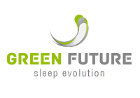 Management Marketing, Studiu de Caz, Holding de companii Green Future: