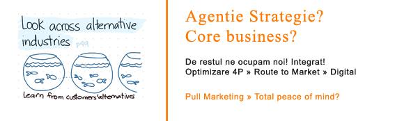 Branding & Rebranding » Proces Business Strategy » B2B STRATEGY Romania