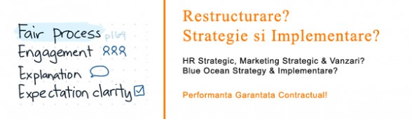 Restructurare. HR Strategic. Marketing Strategic: