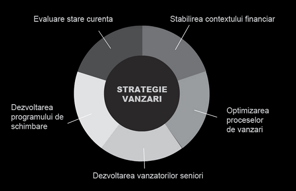 Strategie Vanzari 2013