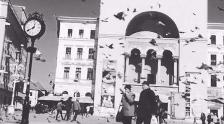 Timisoara in alb si negru