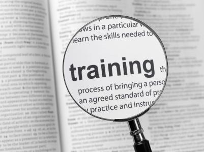 Training Vanzari B2B Performanta Echipa Vanzari Romania Survey 2012 - 2013