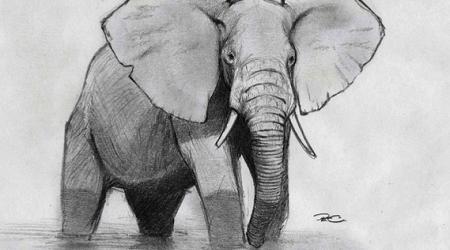 Trenduri inovatie 2018 despre elefanti @ Daniel Rosca B2B Strategy(1)