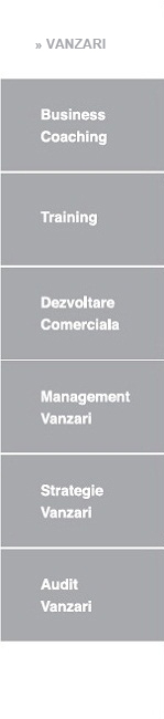 Turnaround Management. Optimizare procese Departament Vanzari. Performanta Operationala: