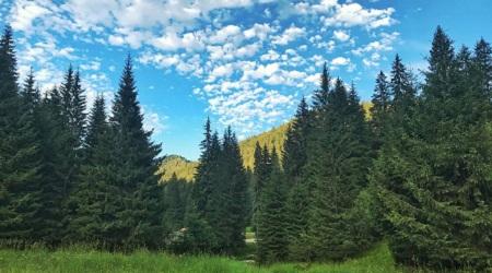 Weekend de poveste in Valea JIULUI