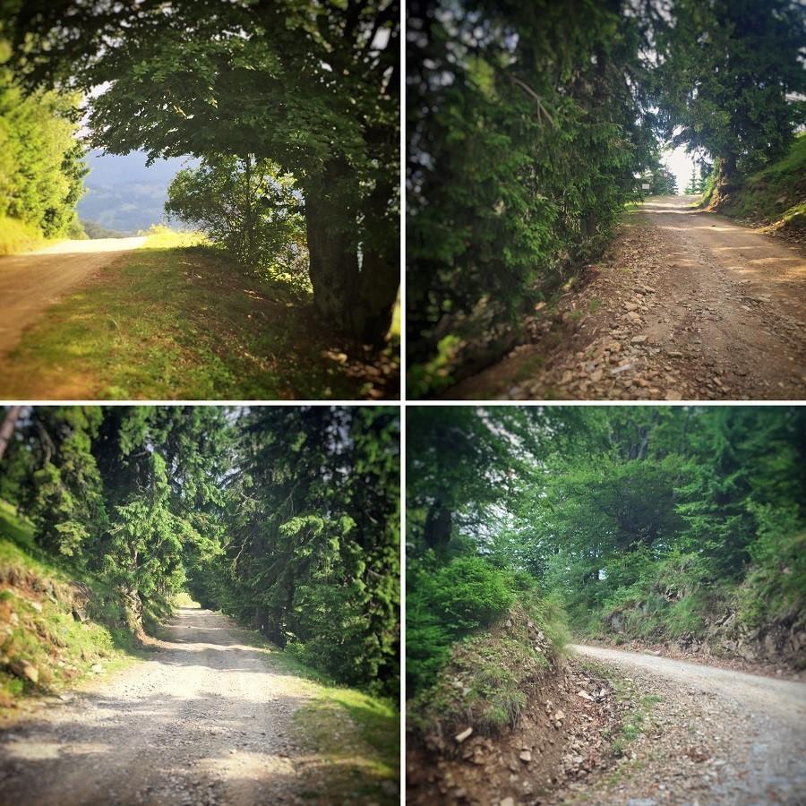 Parâng, Petroşani, Hunedoara 23 drum Cabana Rusu Parang