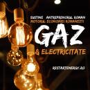 Antreprenoriatul autohton Motorul economiei românești 10