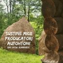 Antreprenoriatul autohton Motorul economiei românești 9