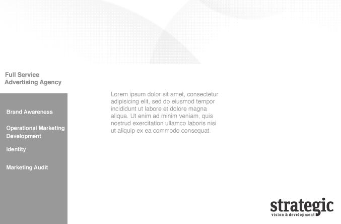 strategic-vision-development-web-about-us-services