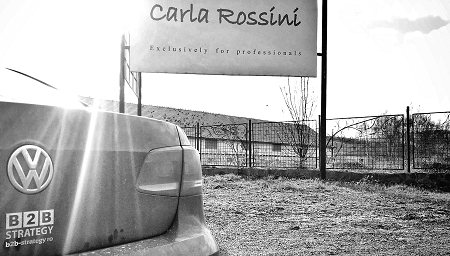 Advertorial RAPEL Carla Rossini B2B Strategy Daniel Rosca VW Passat vs Subaru Protocol