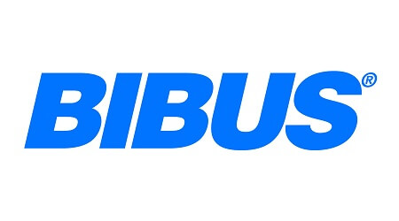 Bibus Training Marketing Digital Marketing Strategic