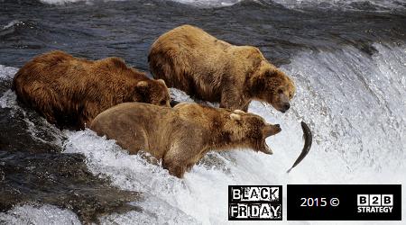Black Friday Brown Bear B2B Strategy