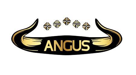 Industrie carne procesata Brand mezeluri vita ANGUS
