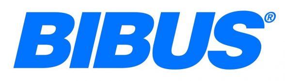 Management Marketing BIBUS client training strategie