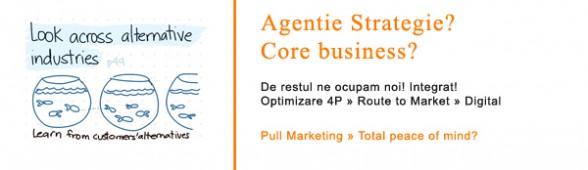 Management Marketing Studii de Caz & Work With Us. Total peace o Mind.