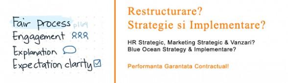 Restructurare. HR Strategic. Marketing Strategic: