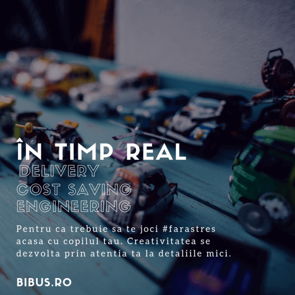 Studiu de caz Marketing Digital BIBUS