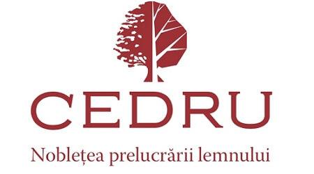 procesul de rebranding in 2010